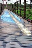屏東縣.萬巒鄉.萬巒3D彩繪吊橋:[lsg2006] 萬巒3D彩繪吊橋