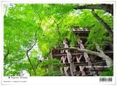 京都府.清水寺:[bibitsai] nEO_IMG_20120623td 877.jpg