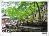 京都府.清水寺:[bibitsai] nEO_IMG_20120623td 885.jpg