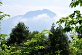 新竹縣.尖石鄉.數碼天空景觀園區:[lsg2006] 數碼天空景觀園區