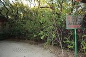 高雄市.楠梓區.高雄都會公園:[liupangyen] 100年02月06日與妻子由高雄都會公園參加自然生態導覽活動_31.JPG