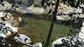 台中市.和平區.八仙山國家森林遊樂區天籟步道:[feng15feng15] 八仙山國家森林遊樂區天籟步道