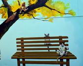 嘉義縣.民雄鄉.民雄菁埔社區貓世界:[lsg2006] 民雄菁埔社區貓世界