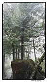 宜蘭縣.大同鄉.太平山森林遊樂區:[stanley_usc] DSC00767.jpg