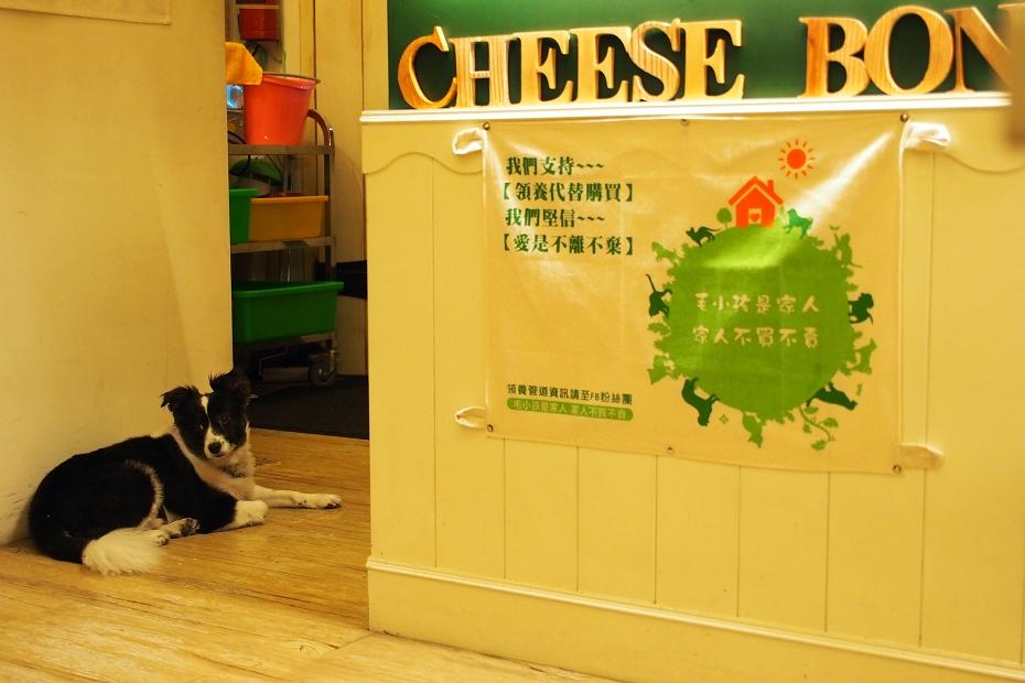 花蓮縣.花蓮市.Cheese Bon 鄉村廚房:[carolchia] P7094068.jpg