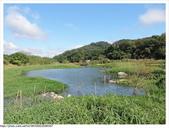 桃園市.大溪區.月眉人工濕地生態公園:[fuli19610302] 月眉人工濕地生態公園