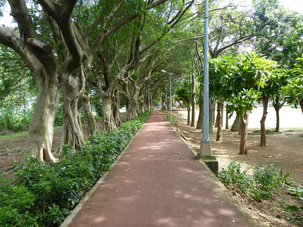 台北市.士林區.至善公園:[anny1958] 至善公園