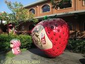 苗栗縣.大湖鄉.草莓文化館 (大湖酒莊):[stephen_cyk] IMG_4943.jpg