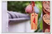 2014 05 18 花蓮之旅:IMG_0090.jpg