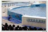 20150523沖繩之旅~辛苦多年捨得ㄧ下吧!(風景篇):0529_yuan_0301.JPG