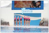 2011海洋公園-海豚秀:IMG_28462011.jpg