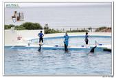 20150523沖繩之旅~辛苦多年捨得ㄧ下吧!(風景篇):0529_yuan_0296.JPG