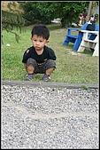 三峽皇后森林:2007.5.10三峽 110