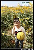 台中2日遊(第1日) 台中新社-科博館-一中商圈-湖水岸汽車旅館:台中遊 (2).jpg