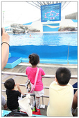 2011海洋公園-海豚秀:IMG_28482011.jpg
