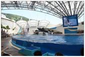 2011海洋公園-海豚秀:IMG_28492011.jpg