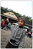 年初一(又見動物園)>,>:20110203081.jpg