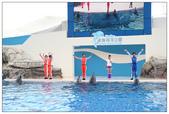 2011海洋公園-海豚秀:IMG_28512011.jpg