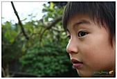 年初一(又見動物園)>,>:20110203083.jpg
