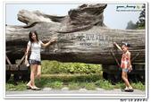 20120908 太平山之旅:2012_0908 (20).jpg