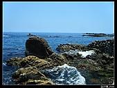 金沙灣浮淺:DSCF0519.jpg