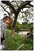 年初一(又見動物園)>,>:20110203091.jpg
