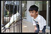 台中2日遊(第2日)水舞饌-->謝氏早餐豆花-->彩繪村-->龍騰斷橋-->勝興車站:20101119386.jpg