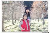 2014_0202_武陵2日:2014_02_02_0008.jpg