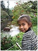 年初一(又見動物園)>,>:20110203097.jpg