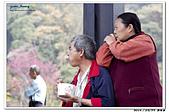 2015022210 南投新年遊:20150223_yuan_142.jpg
