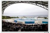 20150523沖繩之旅~辛苦多年捨得ㄧ下吧!(風景篇):0529_yuan_0290.JPG