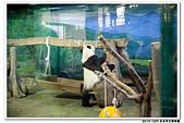 20151205 動物園:2015_1205_0138_yuan.JPG
