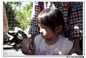 20151205 動物園:2015_1205_0042_yuan.JPG