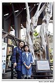 2015022210 南投新年遊:20150223_yuan_107.jpg