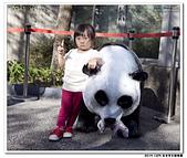 20151205 動物園:2015_1205_0130_yuan.JPG