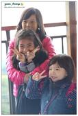 20121230 南投。鹿谷- 銀杏森林:20121230 (10).jpg