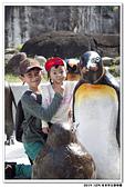 20151205 動物園:2015_1205_0025_yuan.JPG