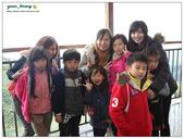 20121230 南投。鹿谷- 銀杏森林:20121230 (13).jpg