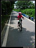 碧潭卡踏車:IMG_0238.jpg