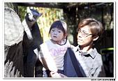 20151205 動物園:2015_1205_0043_yuan.JPG