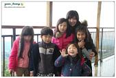 20121230 南投。鹿谷- 銀杏森林:20121230 (16).jpg