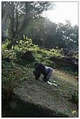 年初一(又見動物園)>,>:20110203117.jpg