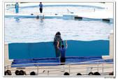 20150523沖繩之旅~辛苦多年捨得ㄧ下吧!(風景篇):0529_yuan_0297.JPG