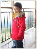 20121230 南投。鹿谷- 銀杏森林:20121230 (17).jpg