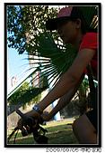 幼幼班卡踏車:20090905 267.jpg
