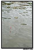 小朋友釣魚社:20090927 074.jpg