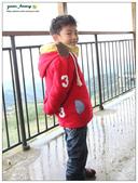 20121230 南投。鹿谷- 銀杏森林:20121230 (18).jpg