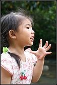 三峽皇后森林:2007.5.10三峽 101