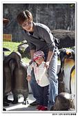 20151205 動物園:2015_1205_0022_yuan.JPG