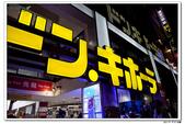 20150523沖繩之旅~辛苦多年捨得ㄧ下吧!(風景篇):0529_yuan_0096.JPG